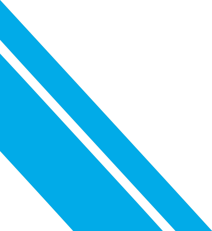 Vectorama 2016